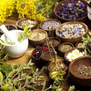 طرح توجیهی تولید انواع گل و گیاهان داروِئی و صنعتی (97)