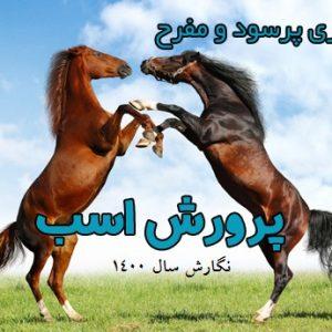 طرح توجیهی پرورش اسب pdf | برآورد سود پرورش اسب در سال 1400
