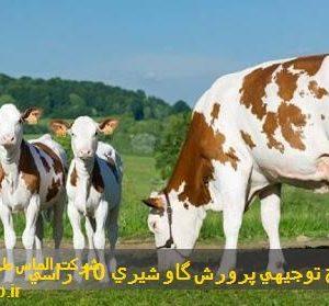 طرح توجیهی پرورش گاو شیری 10 راسی   هزینه احداث گاوداری 10 راسی در سال 1400